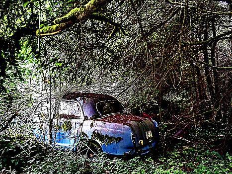 Kevin D Davis - Abandoned II LS