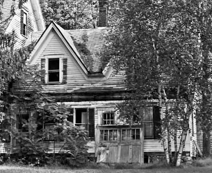 Abandoned on Main St. by Sasha Wolfe