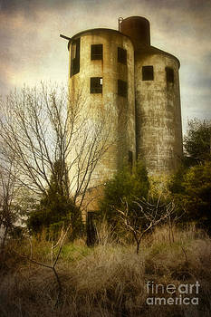 Abandoned Silo by Susan Isakson