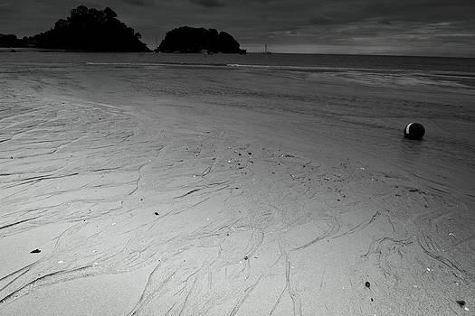 Jonathan Hansen - Abel Tasman Beach 4