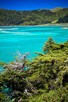 Jonathan Hansen - Abel Tasman Beaches 4