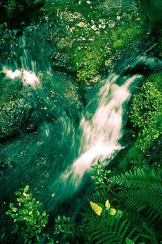 Jonathan Hansen - Abel Tasman Waterfall 1