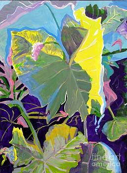 Abstract Elephant Ear by Susan  McNeil