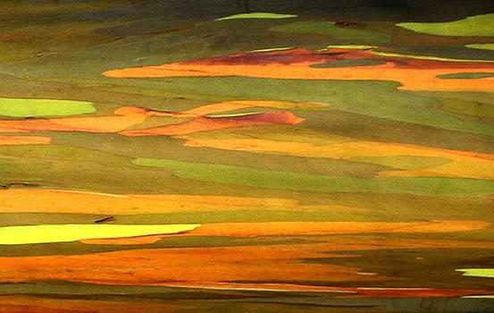 Marilyn Hunt - Abstract Eucalyptus 2
