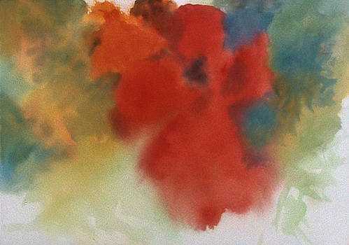 Abstract Red Poppy by Alethea M