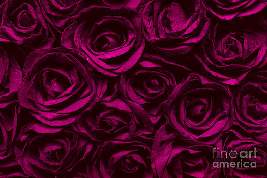 Abstract Red Rose Surface  by Jantima  Cha