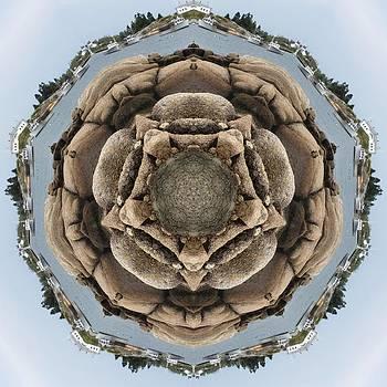 Acadian Rocks by Trina Stephenson