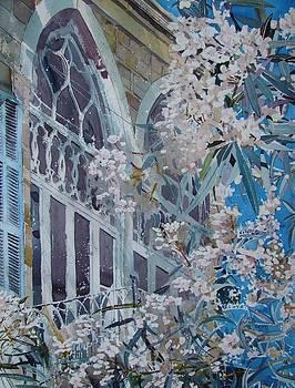 Achrafieh Oleander House by Martin Giesen