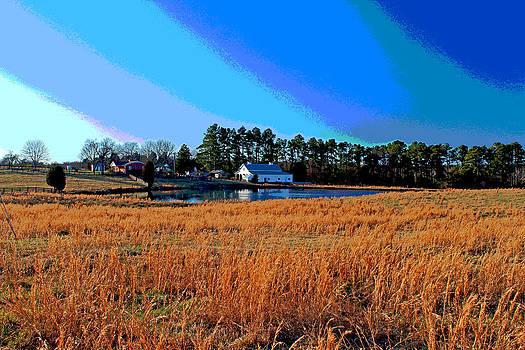 Across Golden Meadow by Bob Whitt