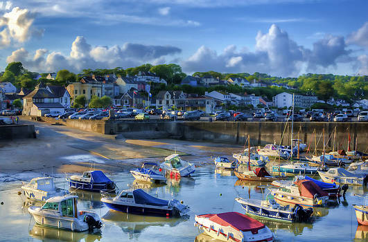 Steve Purnell - Across Saundersfoot Harbour Painted