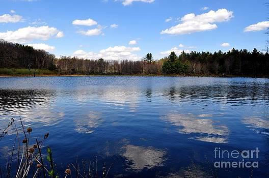 Across the Pond  by Gwen  Dubeau