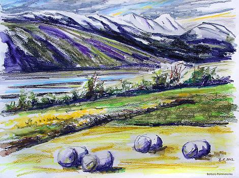 Adaldalur Valley Iceland by Barbara Pommerenke
