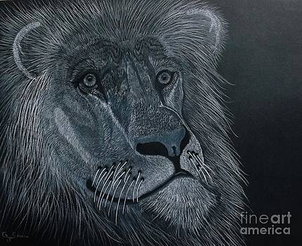 African King by Gerald Strine