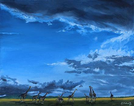 African Skies by Erin Wildsmith