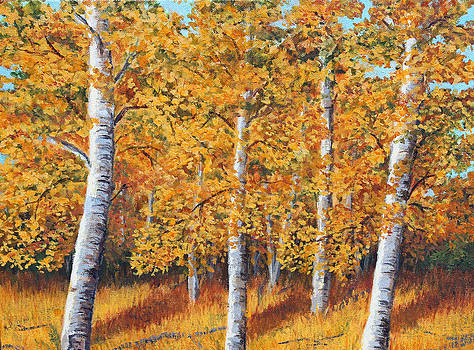 Afternoon in the Aspens by Lorraine Foster