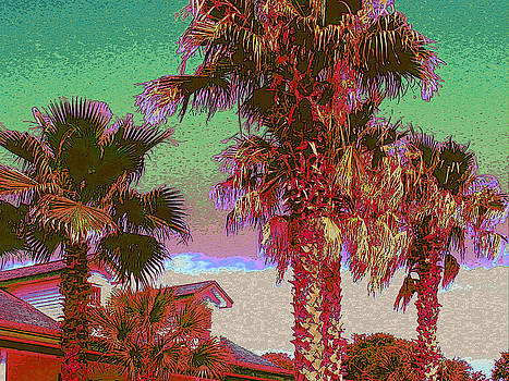 Afternoon Palm Paradise by Tracy Daniels