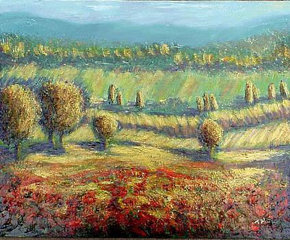 Afternoon Poppy Field by Terri West