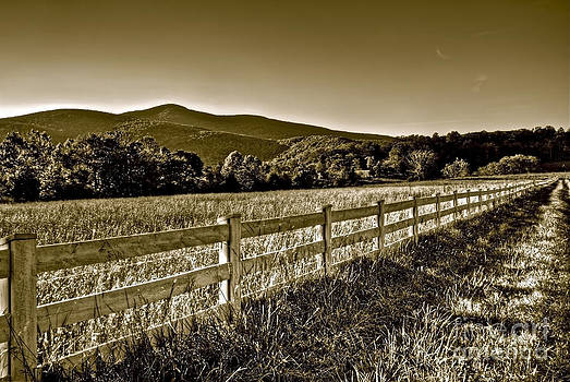 Afternoon Sunset along the Fence Line by Mark East