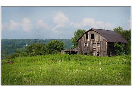 Ageless Barn by Megan Maloney