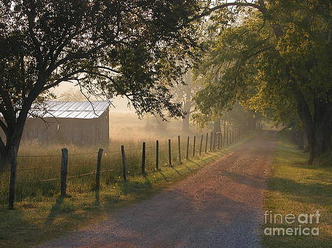 Alabama Morning by Don F  Bradford