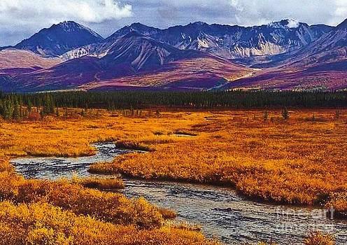 Alaskan Range by Diane Kurtz