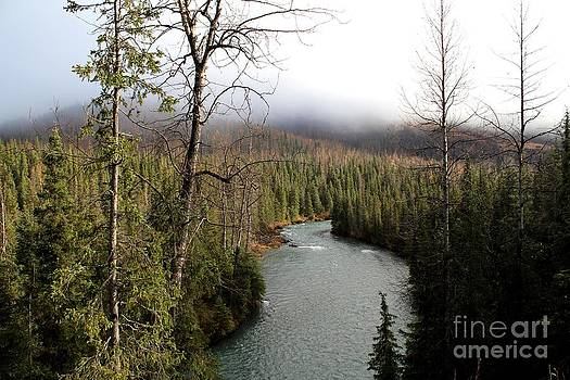 Alaskan River View by Theresa Willingham