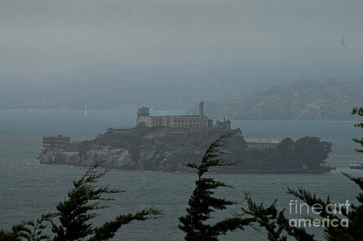 Tim Mulina - Alcatraz and Fog
