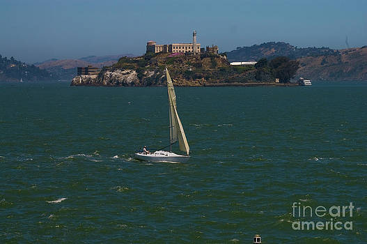 Tim Mulina - Alcatraz and Sailboat