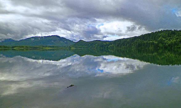 Alder Lake Rorschach by Seth Shotwell