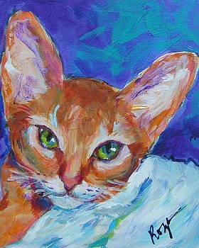 Ali Cat by Judy  Rogan
