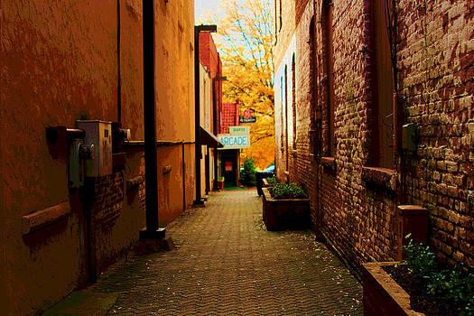 Alley Arcade  by Bob Whitt