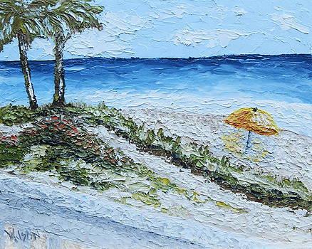 Alluring Beach by Chrys Wilson