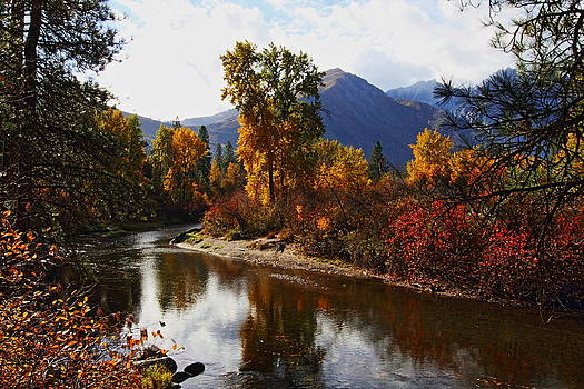 Along the River - Autumn by Daryl Hanauer
