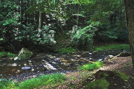 Darlene Bell - Along The Stream