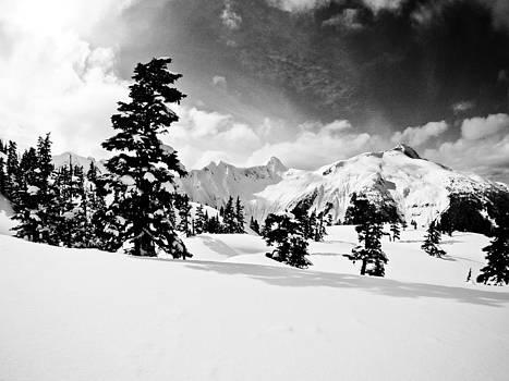 Alpine Winter by Brandon Broderick