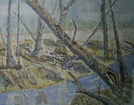 Altamaha River Bottom by Spencer  Joyner