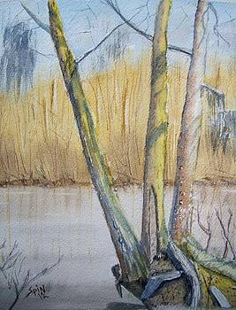 Altamaha River Three Trees by Spencer  Joyner