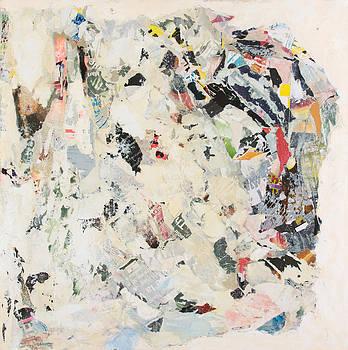 Amalgamation by Anne Kolin