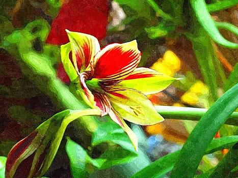 Tammy Bullard - Amaryllis flower oil painting look