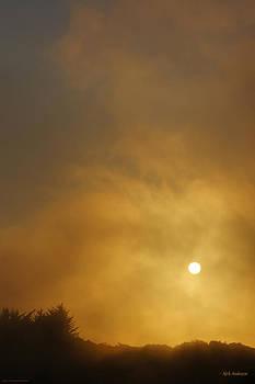 Mick Anderson - Amber Setting Sun