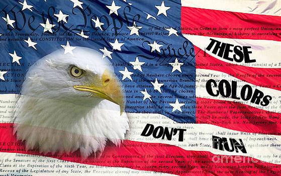 American Pride by Joanne Kocwin