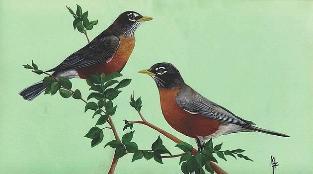 American Robins by Marsha Friedman