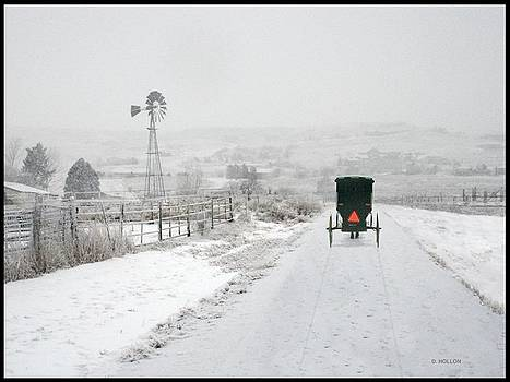 Amish Buggy by Dick Hollon