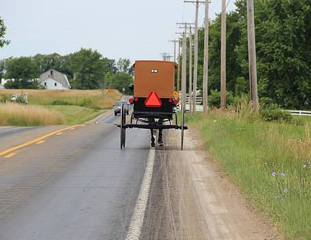 Amish Buggy by Donna Bosela