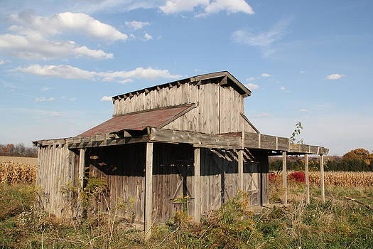 Amish Shed #3 by Donna Bosela