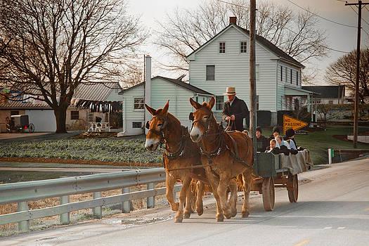 Amish Wagon by Heidi Reyher