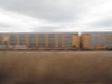 Amtrak Shot 3 by Stephanie Olsavsky