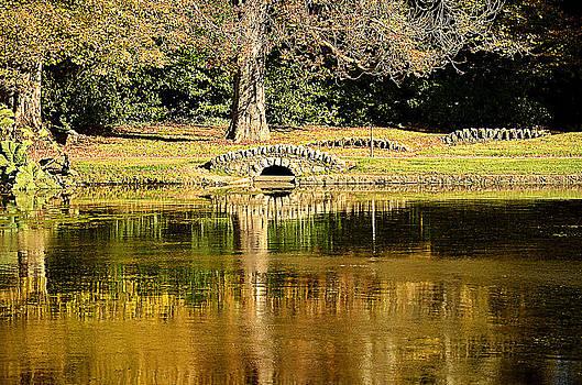 Martina Fagan - An Autumn Bridge