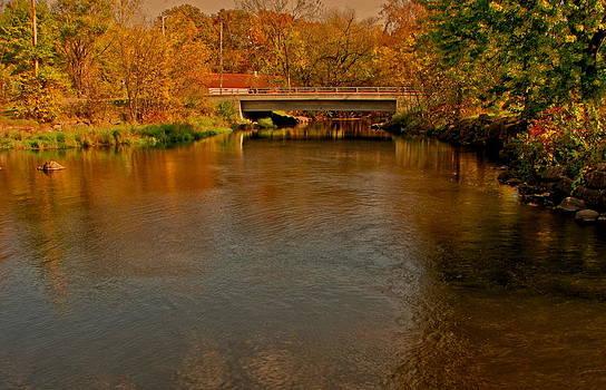 An Autumn Scene by Victoria Sheldon