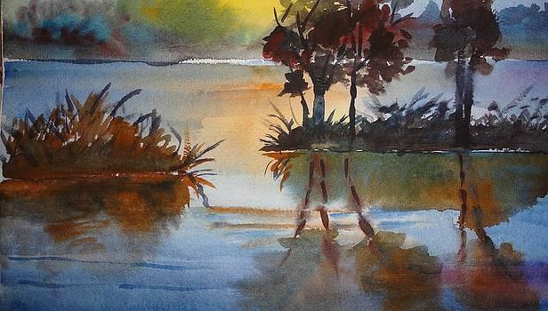 An evening near lake by Vijayendra Bapte